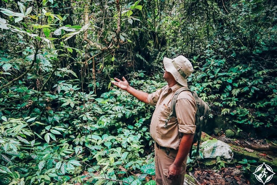 السفر إلى مرتفعات الكاميرون